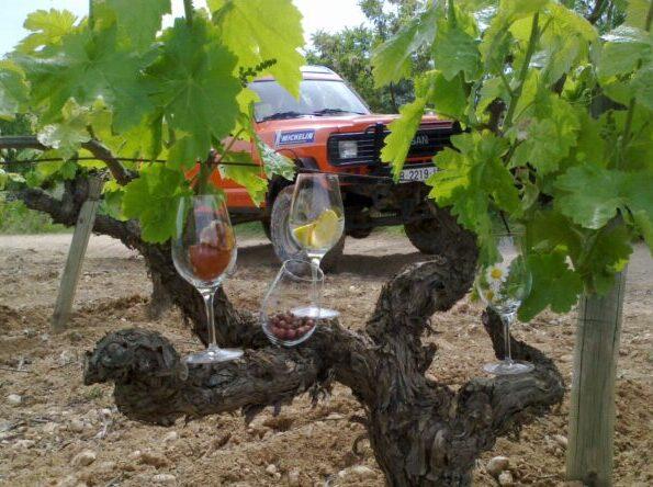 ruta-vinícola-4x4