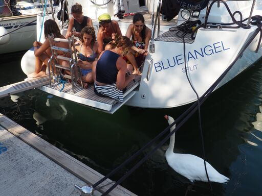 viaje velero croacia